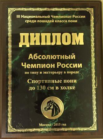 Абсолютный Чемпион России